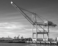Loading Cranes #20, Port of Oakland, 2016